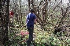 petkid-walk-in-the-woods_DSC_0966